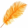 """Ostrich Drab Feathers 11-13"""" Premium Quality Golden"""